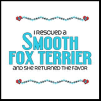 I Rescued a Smooth Fox Terrier (Female Dog)