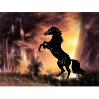 * Horses