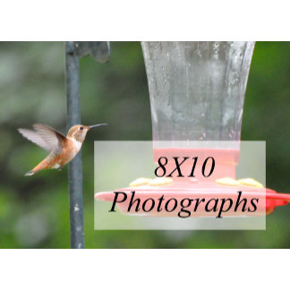 8X10 Photographs