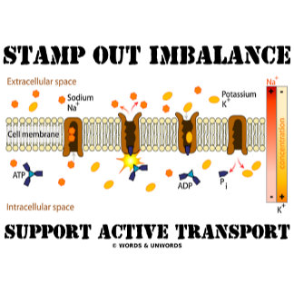 Stamp Out Imbalance Support Active Transport