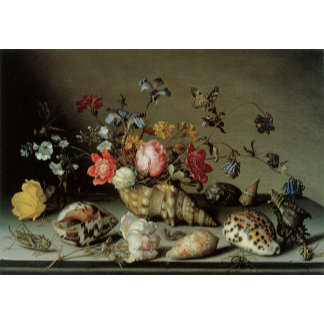 Still Life of Flowers, Shells and Insects