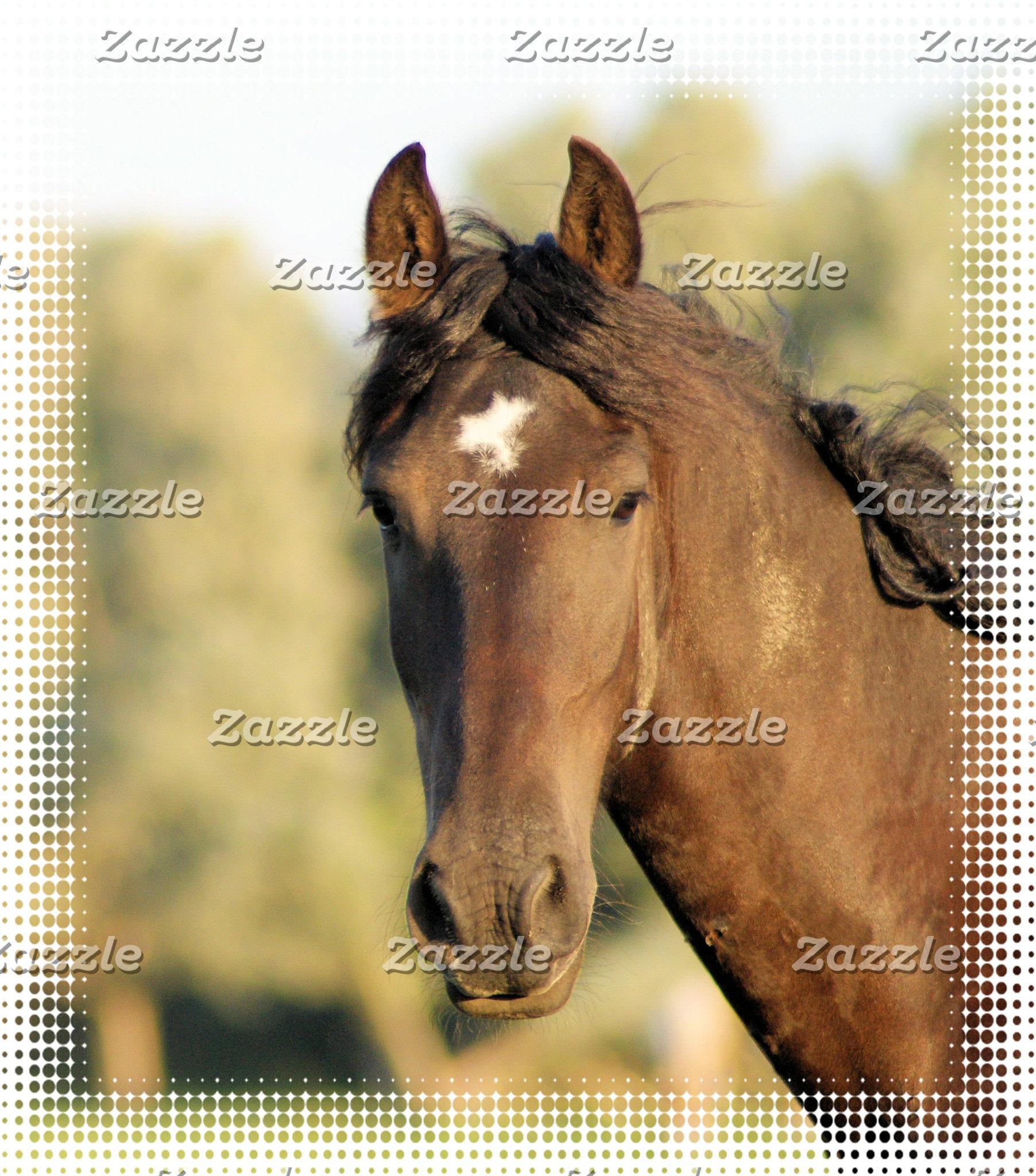 Morgan Horses