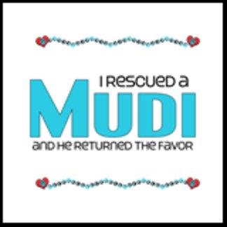 I Rescued a Mudi (Male Dog)