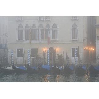 Italy, Venice. A row of gondolas seen through