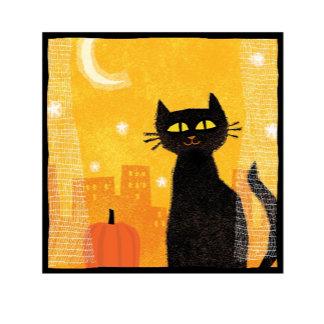Black Cat Scene