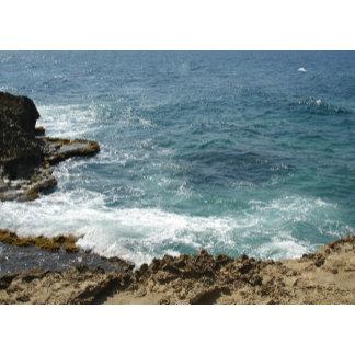 Beach Meets Ocean