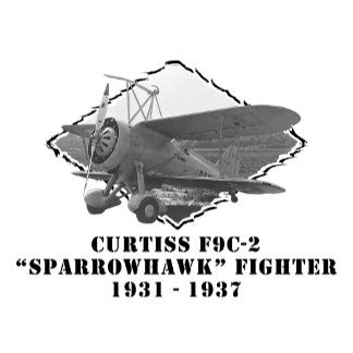 """Curtiss F9C-2 """"Sparrowhawk"""" Fighter"""
