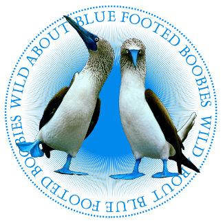 Exotic Galapagos Islands Flora & Fauna