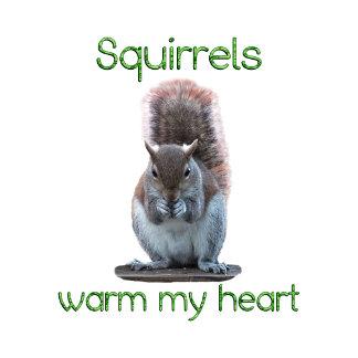 Squirrels Warm Hearts