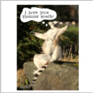 Lemur Love You This Much