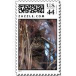 wild_tabby_cat_demotivational_animal_stamp_postage