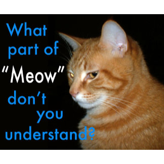 "What Part of ""Meow"" Don't You Understand"