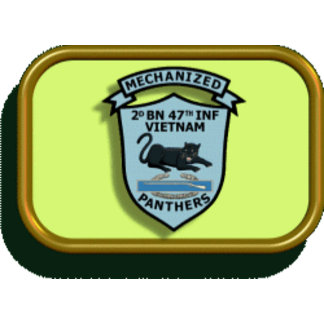 """2/47th Infantry """"Panthers"""""""
