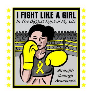Bladder Cancer I Fight Like A Girl Battle