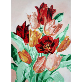 A Tulip Collection