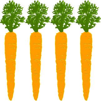 ➢ Four Carrot Sticks