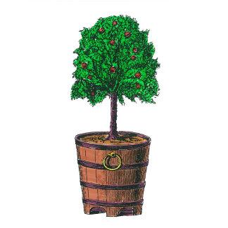 Tree in bucket, all versions