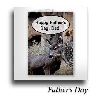 Dad / Father's Day