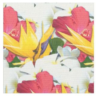 Fabric / Cloth