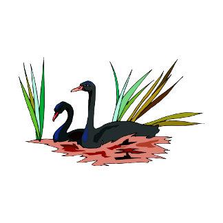 Swerril & Swirrel Swan