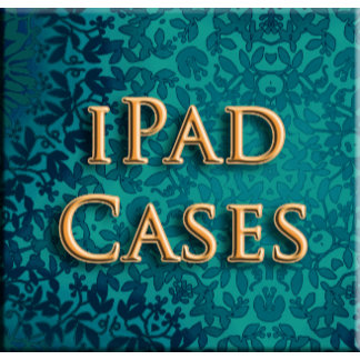 iPad Sleeves / Cases