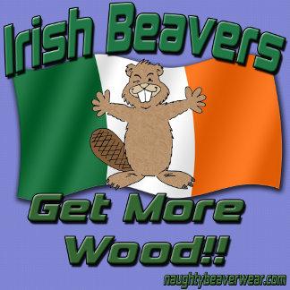 Irish Beavers Get More Wood