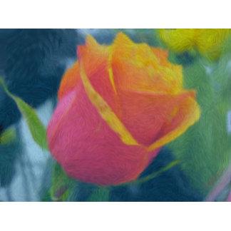 Heidi's Favorite Rose