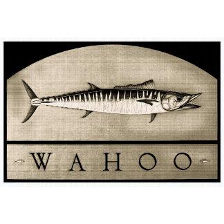 Wahoo Vintage Black & White