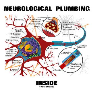 Neurological Plumbing Inside (Neuron / Synapse)