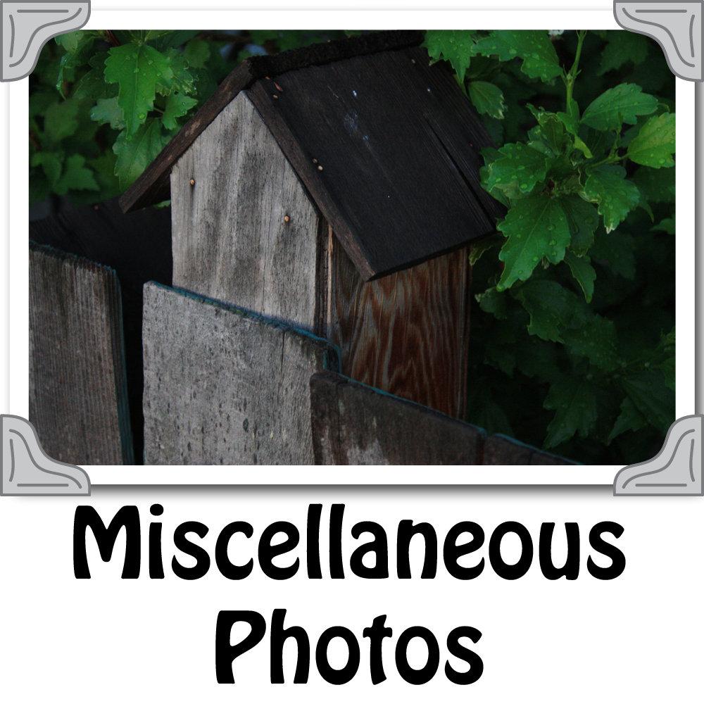 Miscellaneous_Photos