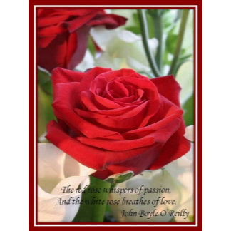 Whispers of Passion and Love