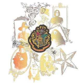 Hogwarts Logo and Professors