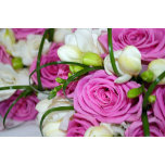 nice-flowers-13464063708Vv.jpg