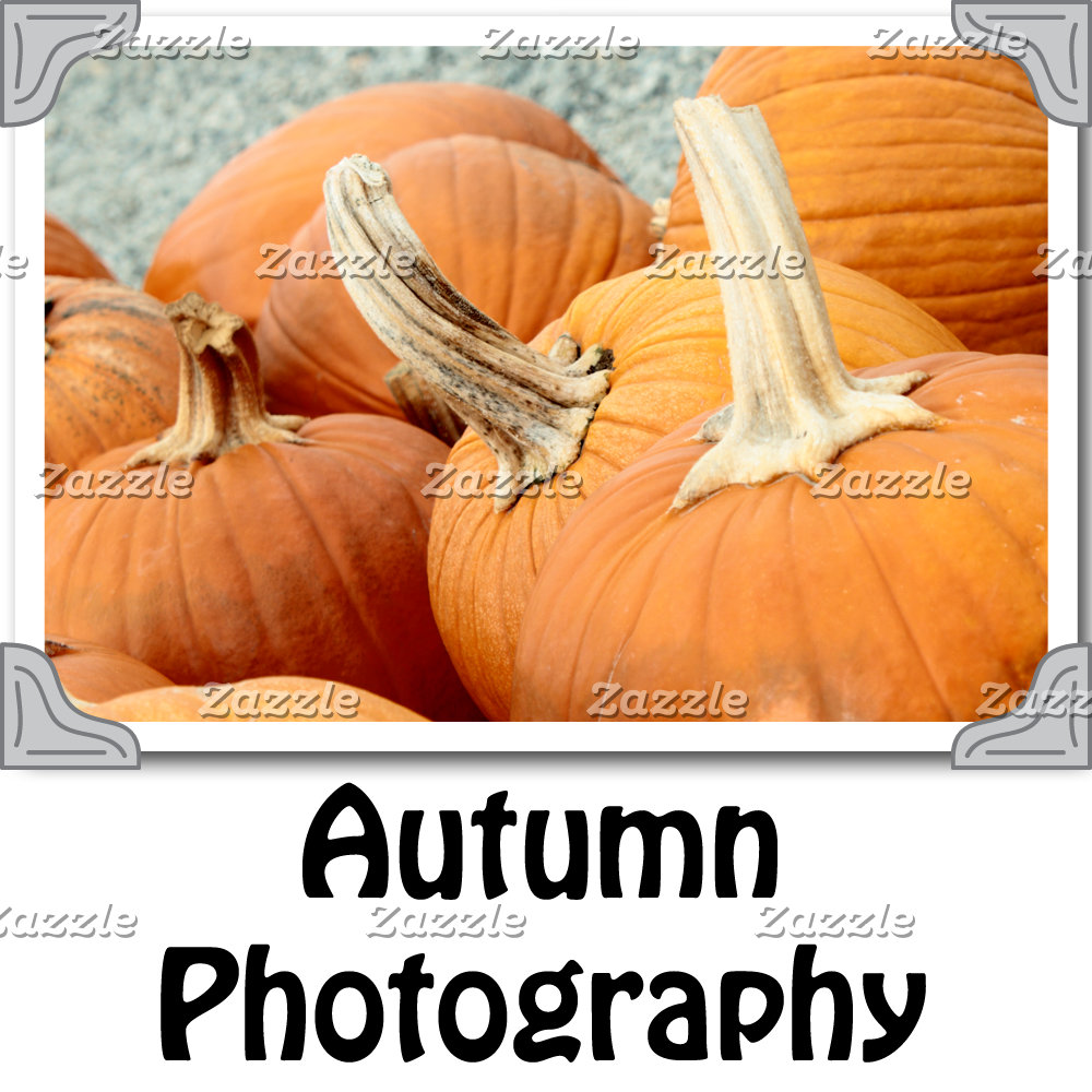 Autumn_Photography