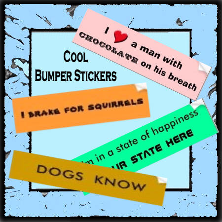 Cool Bumpter Stickers