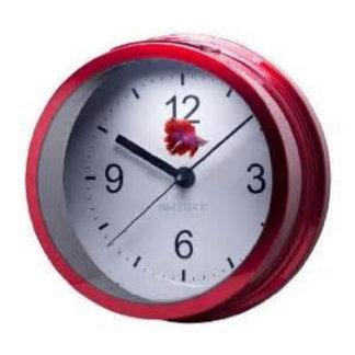 Aqua clock