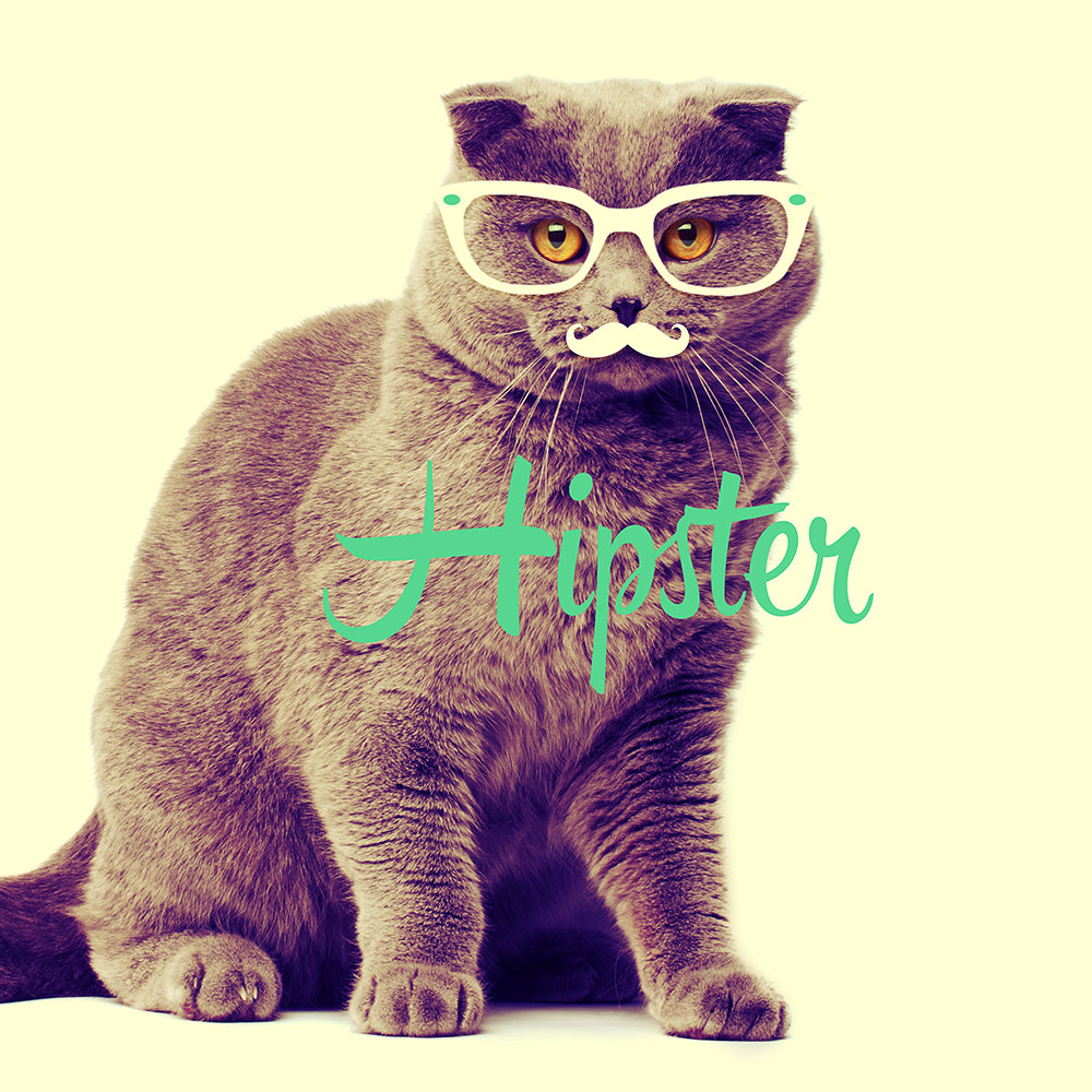 Turquoise Funny Cat Cute Hipster Glasses Mustache
