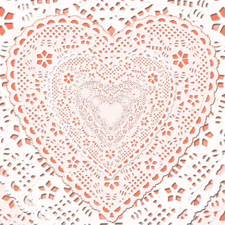 Fabric - Lace on Coral