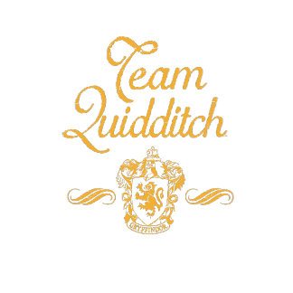 Team Quidditch
