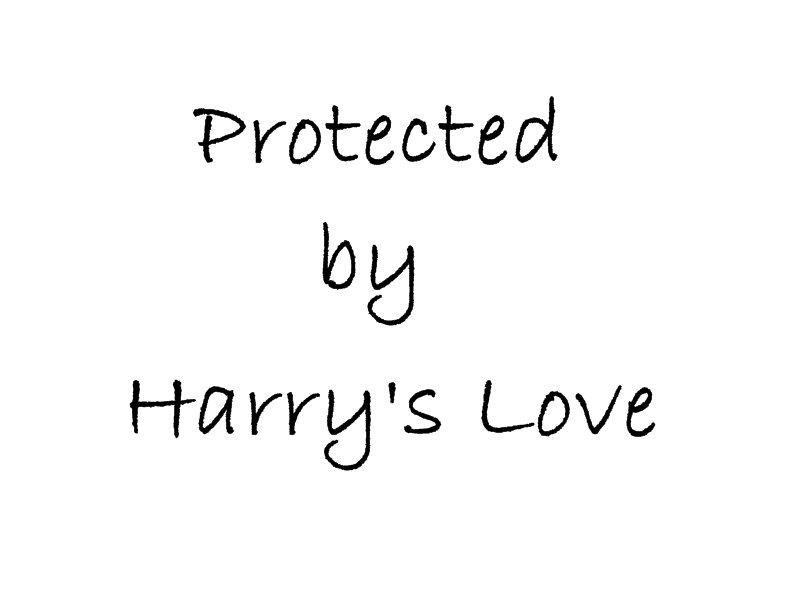 Protected by Harry's Love