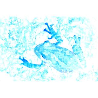 tree frog invert blue white moss animal design