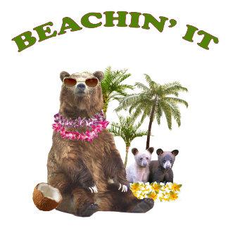 Bear Beaching It