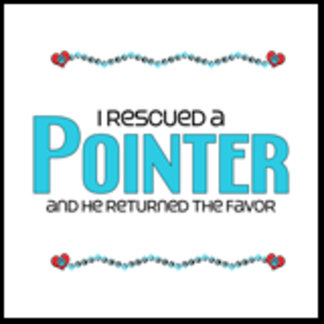 I Rescued a Pointer (Male Dog)