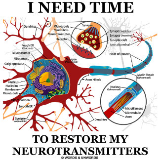 I Need Time To Restore My Neurotransmitters