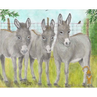 Farm Ranch Animals