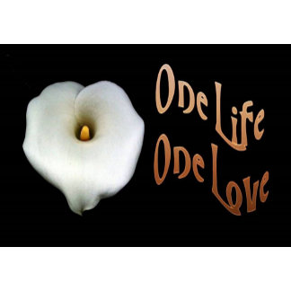 One Life, One Love