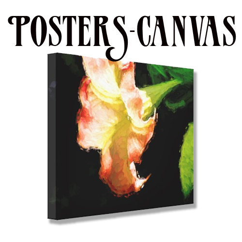 Art -Canvas, Posters