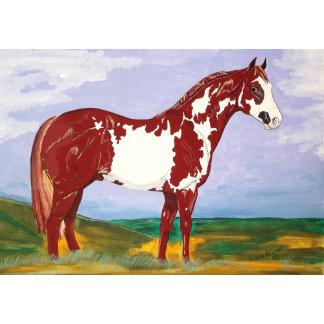 Overo Paint Horse