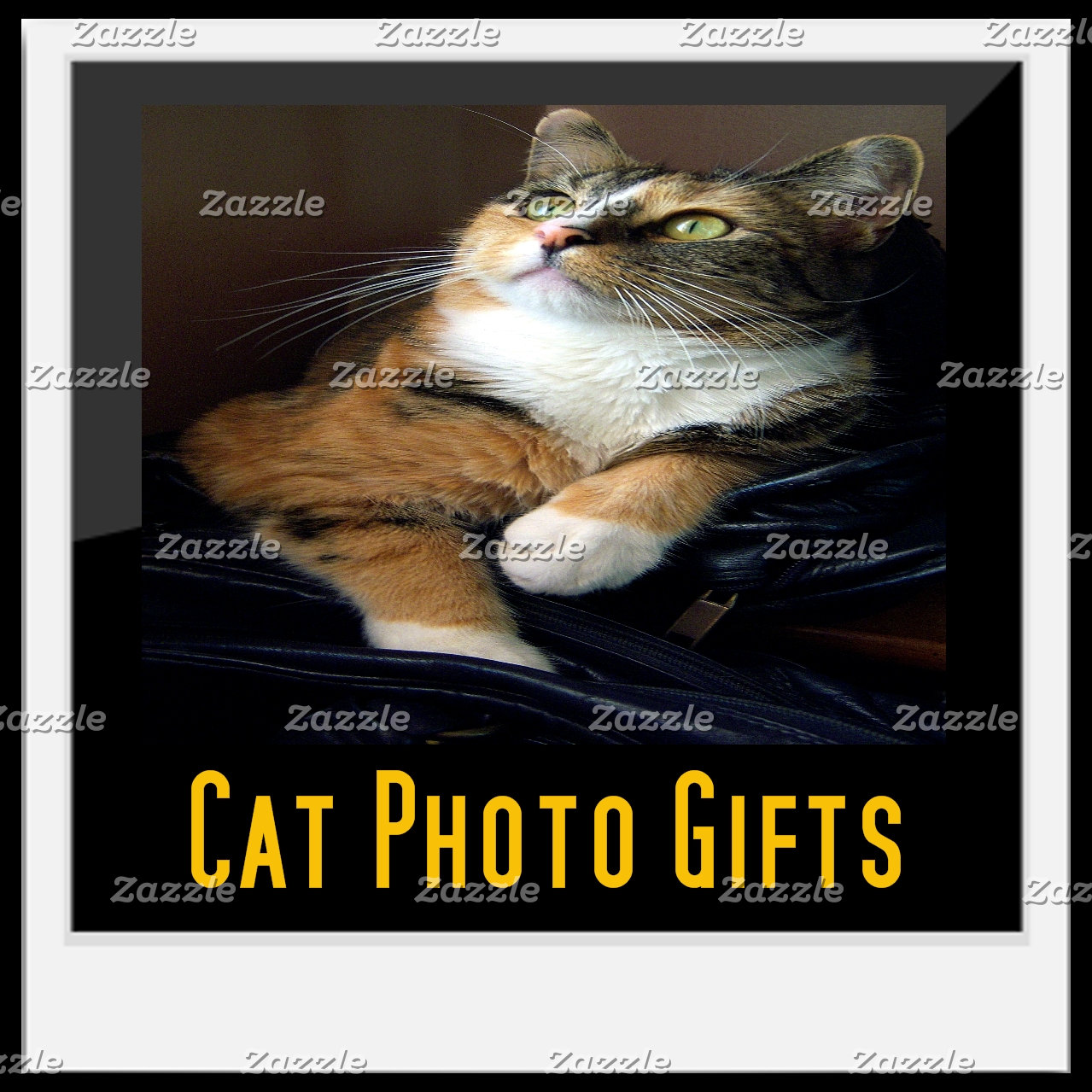 Cat Photo Gifts