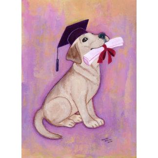 Labrador Graduation